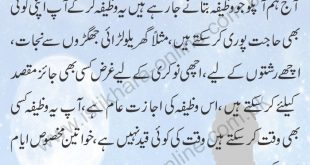 Har maqsad main kamyabi ka wazifa